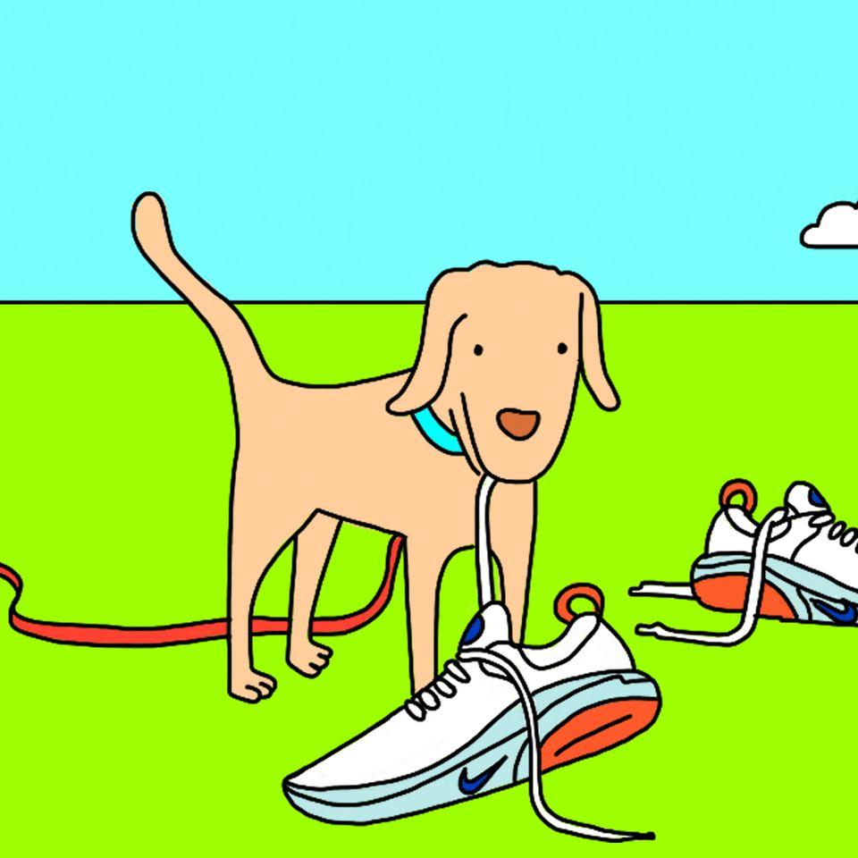 Hvordan løpe med hund