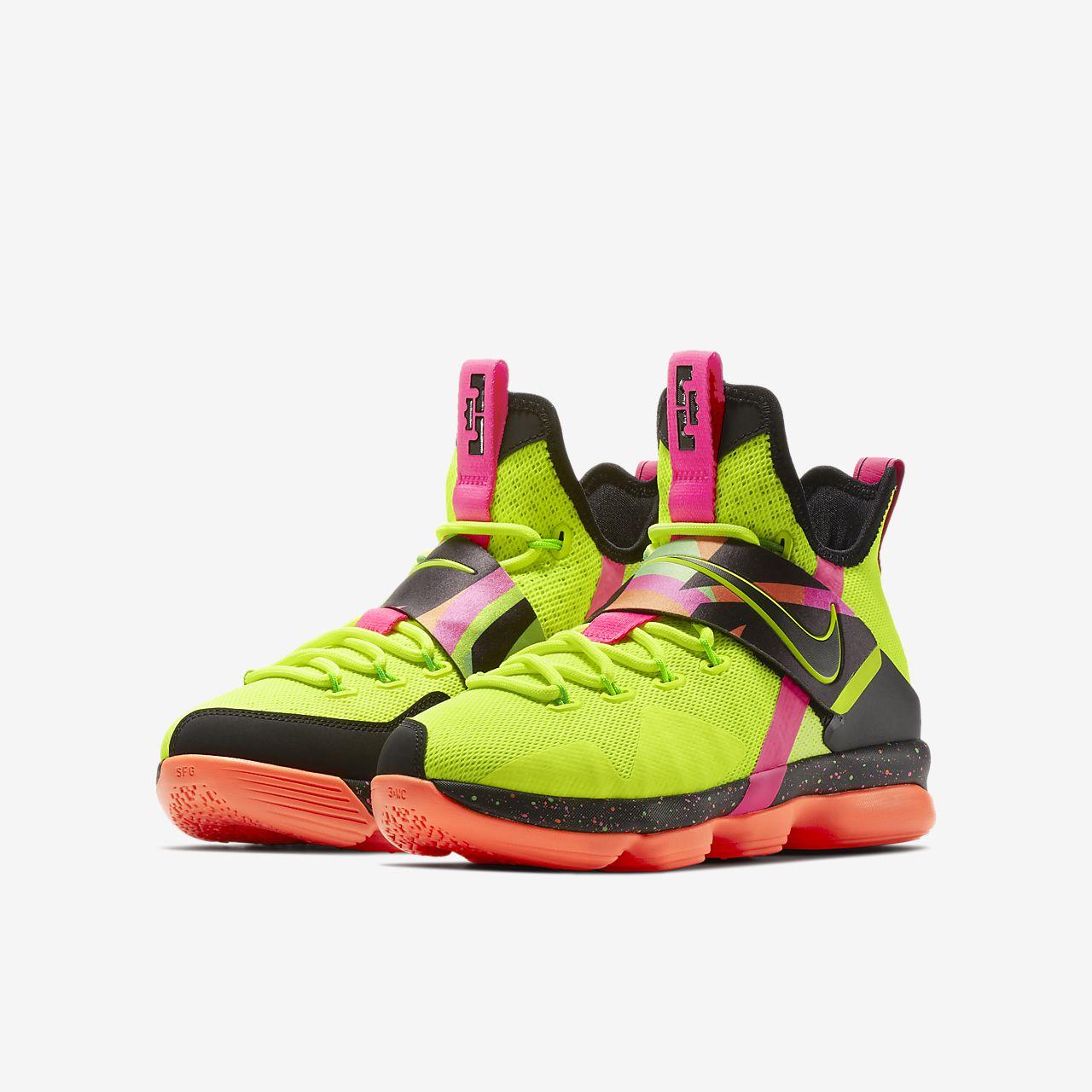 Lebron Xiv Big Kids Basketball Shoe