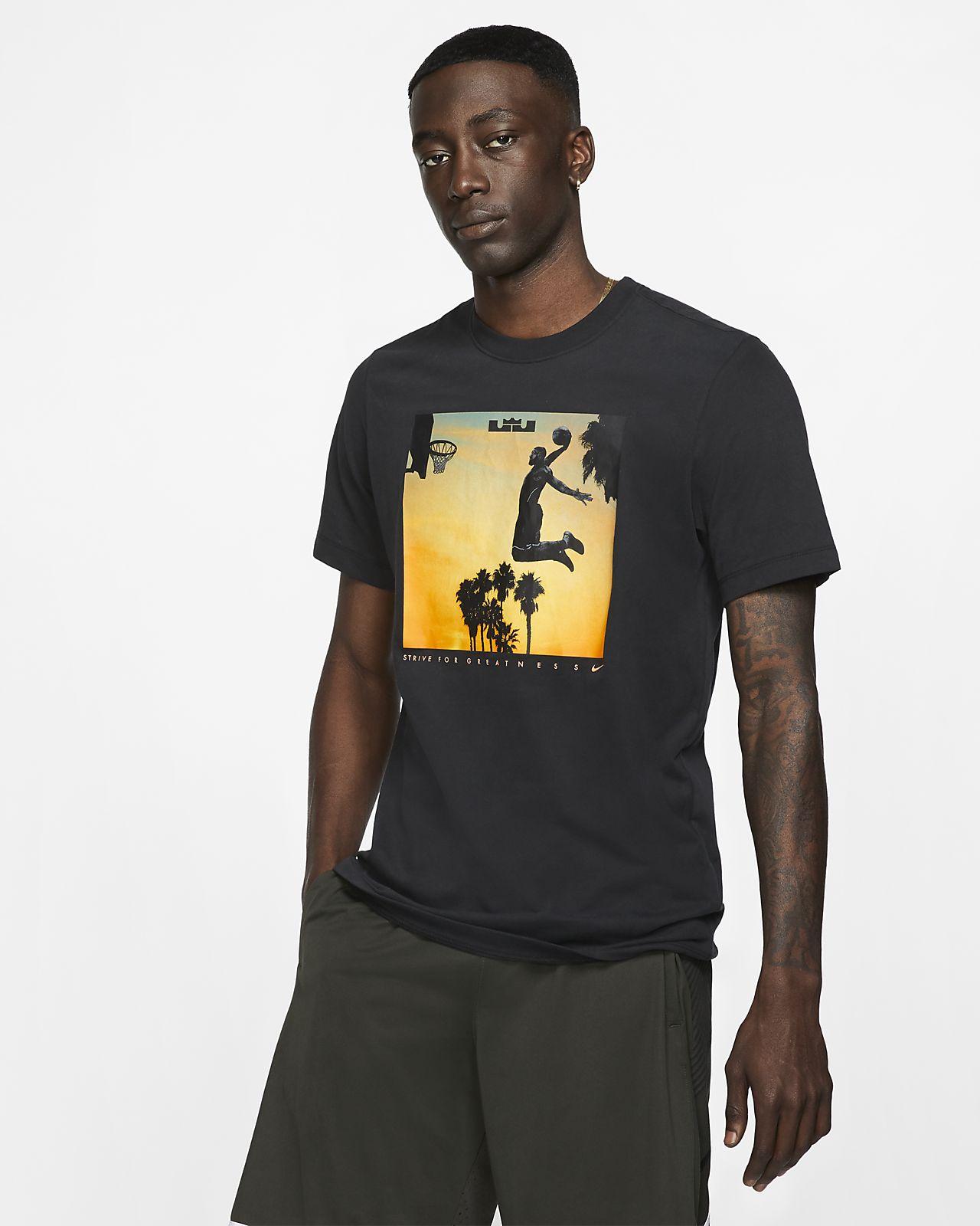 Мужская футболка Nike Dri-FIT LeBron