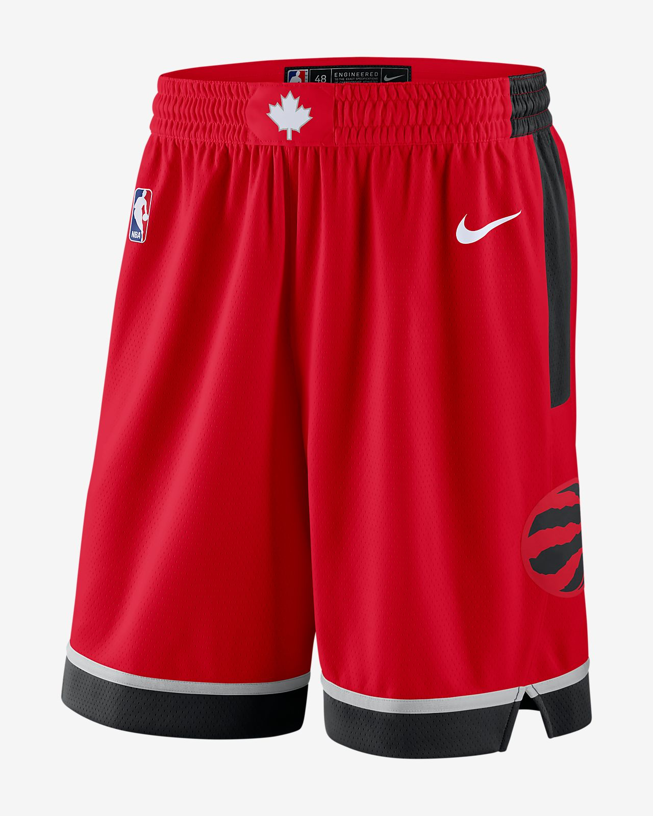 Toronto Raptors Icon Edition Swingman Men's Nike NBA Shorts