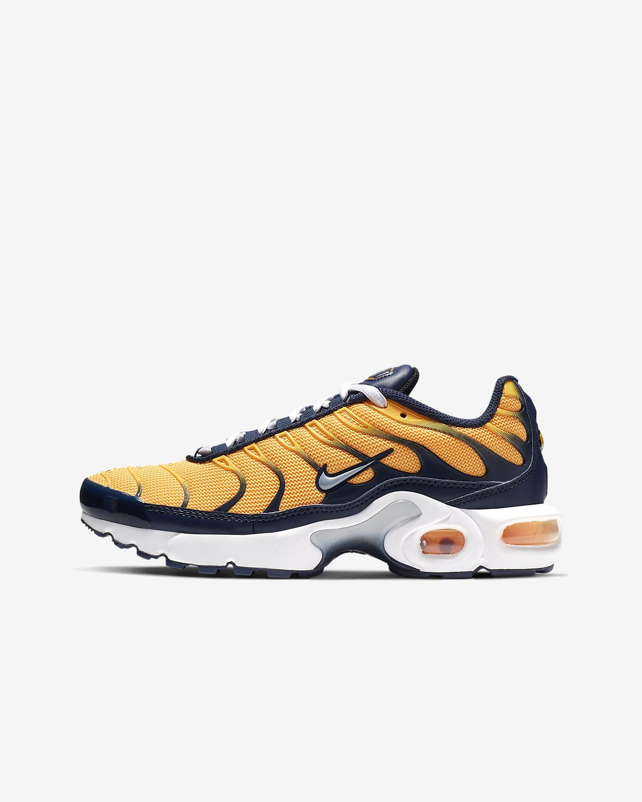 Nike Air Max Plus RF Older Kids' Shoe