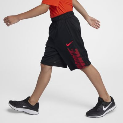 Nike Dri-FIT Big Kids' (Boys') Training Shorts