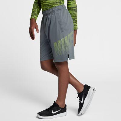 Шорты для тренинга с графикой мальчиков школьного возраста Nike Dri-FIT 20,5 см  - купить со скидкой