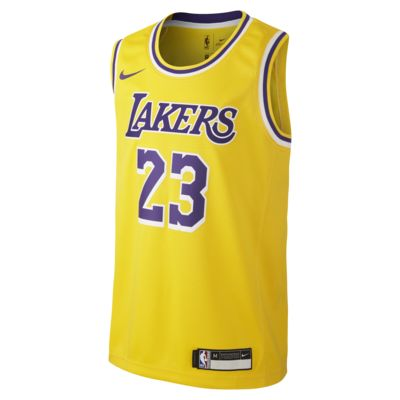 LeBron James Los Angeles Lakers Nike Icon Edition Swingman Older Kids' NBA Jersey