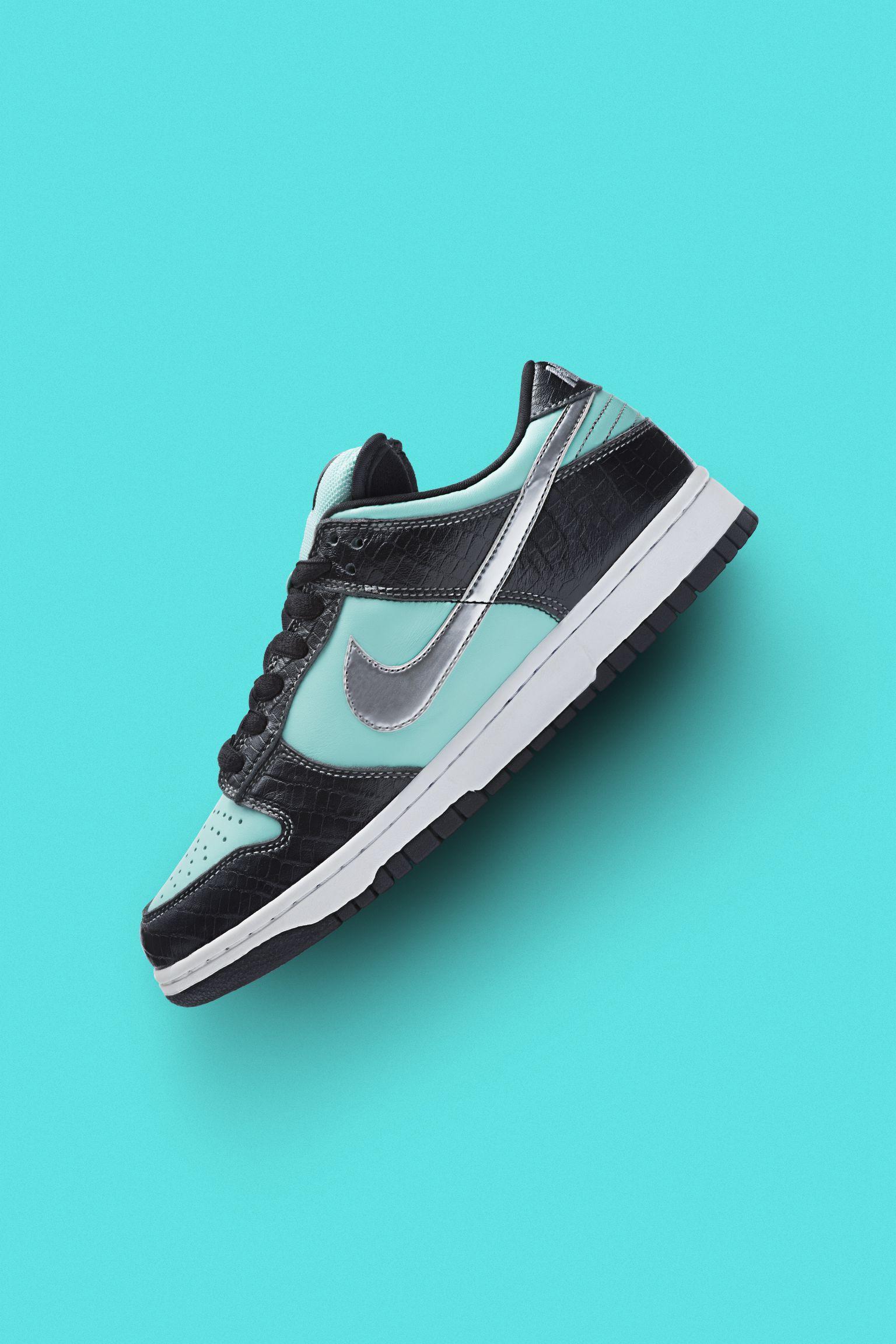 Nike 15 Years of SB Dunk