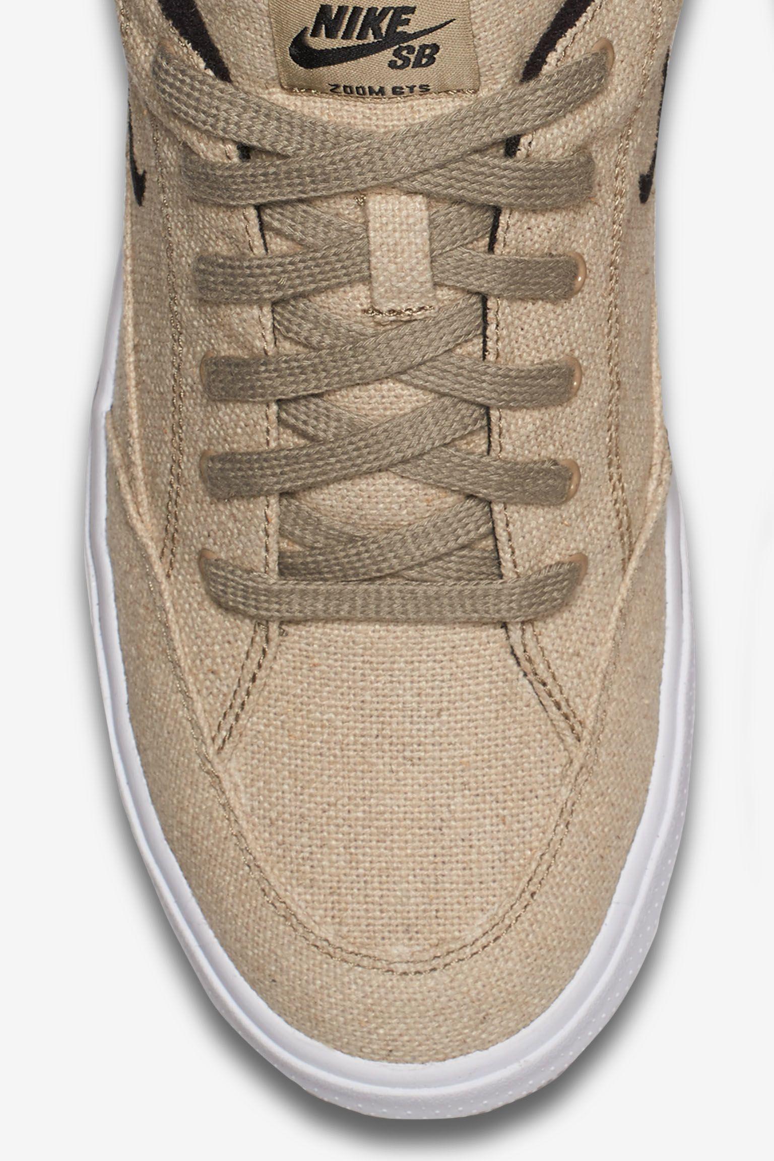 Nike SB Zoom GTS 'Rustic'